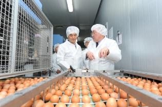식약처, 계란 생산 · 수집 현장 방문
